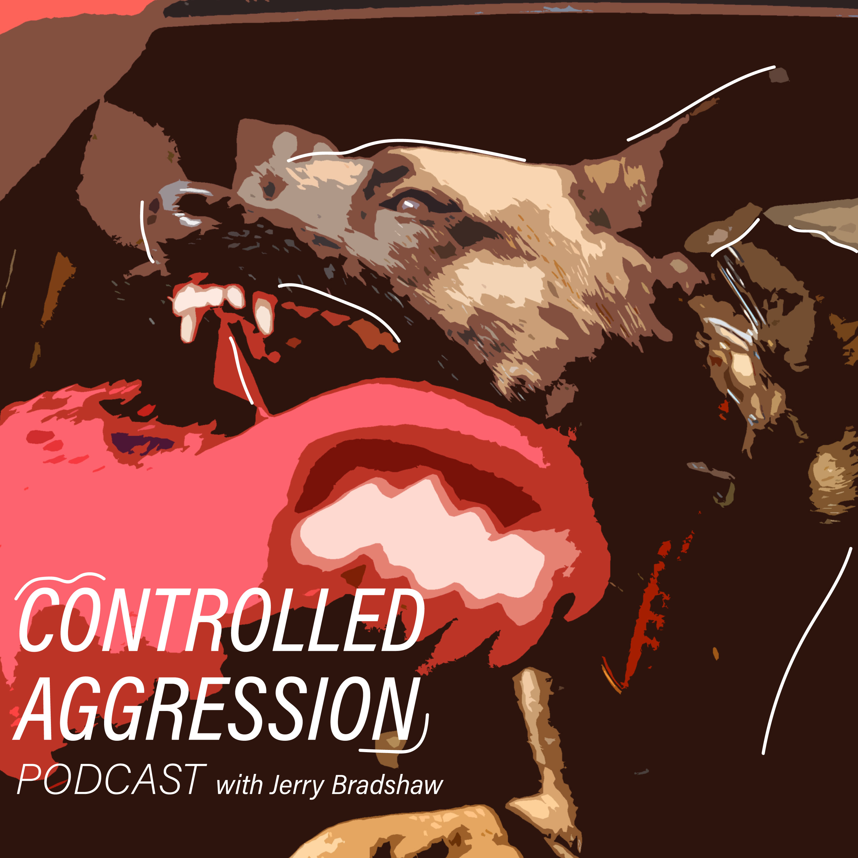 Controlled Aggression Podcast
